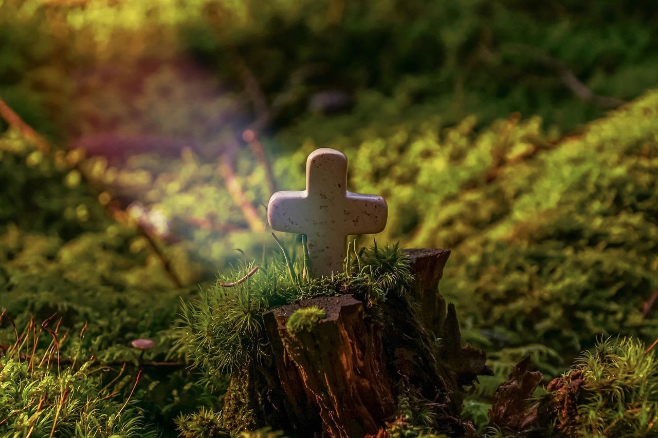 cross in garden image